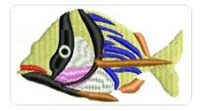 fish007's Avatar